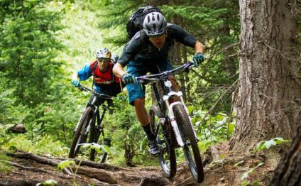 Best Mountain Bike Brands