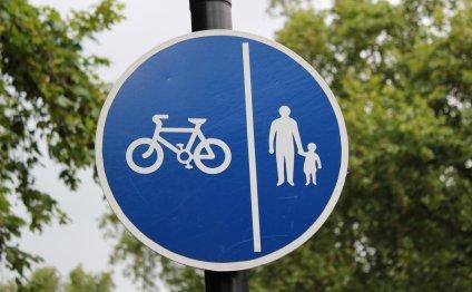 Biking & Pedestrian Zone Sign