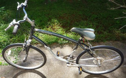 Schwinn Skyliner Womens 21