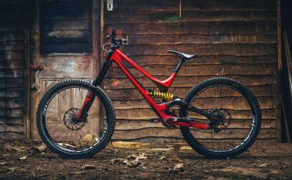 Specialized downhill Bikes