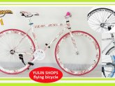 Womens Hybrid bicycles