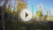 2011 October 15 Fall Mountain Biking Tibble Fork Downhill