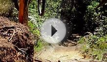 Downhill Mountain Biking is AWESOME