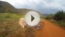 Mountain Biker gets taken out by LION - CRAZY Footage